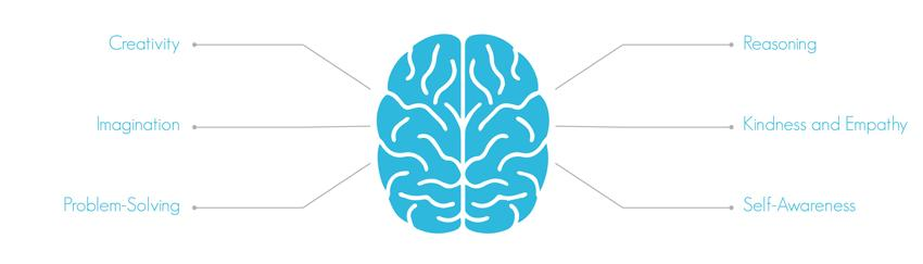 Behaviours of the Rational Brain