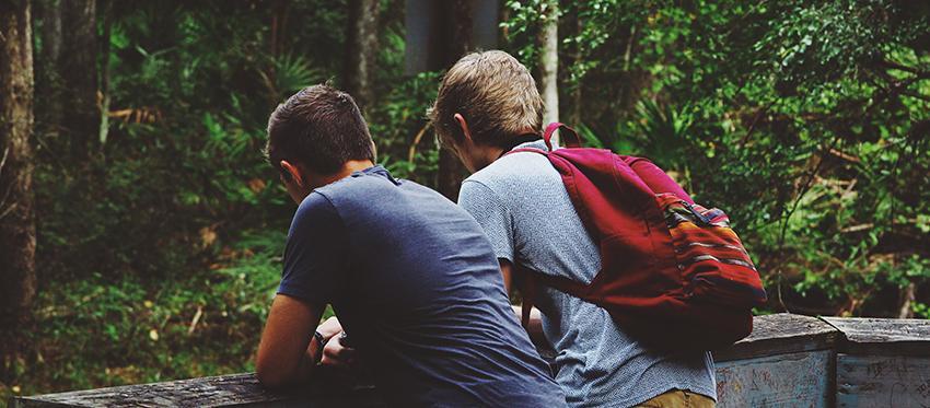 Teenage brain clinical partners